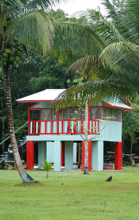 Lower Dover Jungle Lodge the Red House - Lodges in San Ignaico Belize